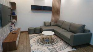 Thảm lót sàn nhà đẹp tông màu trầm với bộ sofa màu ghi